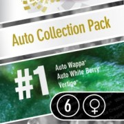 Auto Collection pack #1 Feminised Seeds