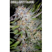 Chem City Blues Auto Feminised Seeds
