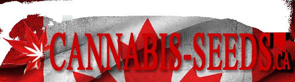 Cannabis Seeds Canada
